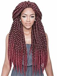 Tresses Twist Extensions de cheveux Cheveux Tressée
