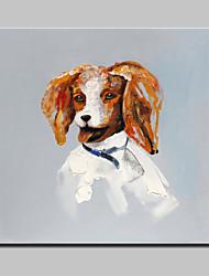 лагер ручной росписью современная картина маслом абстрактной собака животное на холст стены искусства картины для дома йоту кадра