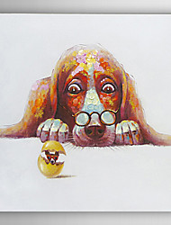 Hand Painted Oil Painting Animal Dog Stared at the Egg with Stretched Frame