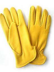 Hirschleder schützen Handschuh