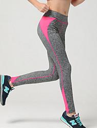 Damen Enge Laufhosen Atmungsaktiv Weich Videokompression Sanft Leggins Unten für Übung & Fitness Laufen Schwarz Orange Gelb Rose Rot
