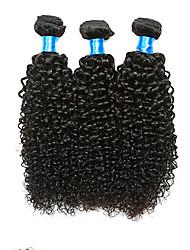 Cabelo Humano Ondulado Cabelo Malaio Kinky Curly 18 Meses 3 Peças tece cabelo