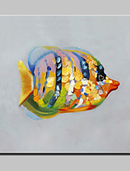 Large Oil Painting Modern Abstract Animal Colorful Fish Picture Hand Painted Canvas With Stretched Frame