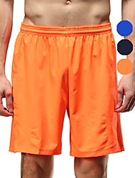 Vansydical Men's Quick Dry Fitness Bottoms Black / Blue / Orange / Royal Blue