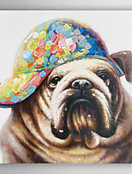 Hand Painted Oil Painting Animal Fashion Dog with a Hat with Stretched Frame
