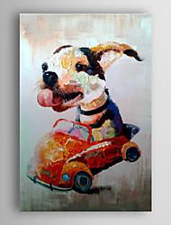 óleo pintados à mão animais pintura do cão animada no carro, com quadro esticado arts® 7 parede
