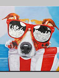 большая картина маслом современные абстрактные собаки животных ручной росписью картины на холсте с растянутыми кадр готов повесить
