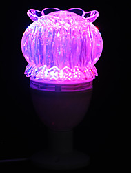Creative LED Color Changing Night Light  Light Control Fiber Dazzle Colour Dream Night Sky Light