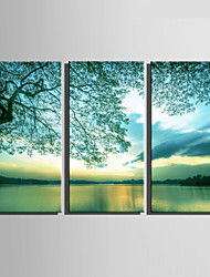 E-HOME® Stretched Canvas Art Green Lake Scenery Decoration Painting  Set Of 3