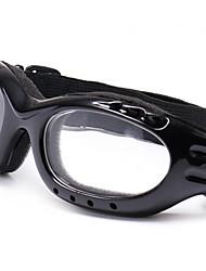 lunettes de moto miroir des lunettes de ski d'alpinisme verres d'équitation en plein air du commerce extérieur