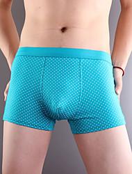 новых людей способа хлопка нижнего белья здоровья 3 цвет