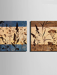 E-HOME® Stretched Canvas Art Small Flower Pattern Decoration Painting  Set of 2