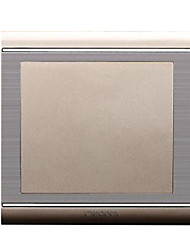 86 Champagne Gold Brushed Stainless Steel Wall Switch Socket Panel Bezel Blank