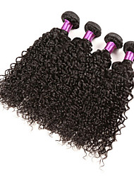 Brazilian Kinky Curly Virgin Hair 4 Bundles  Human Hair Protea Brazilian Hair Weave Bundles