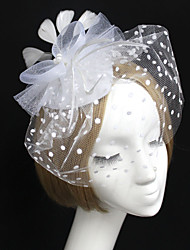 Women's Feather Tulle Net Headpiece-Wedding Birdcage Veils 1 Piece