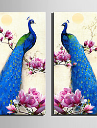 E-HOME® Stretched Canvas Art Pink Flowers And Blue Peacock Decoration Painting  Set Of 2