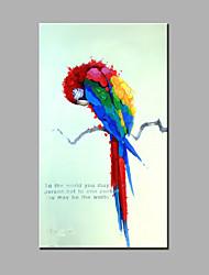 Ручная роспись Животное Картины маслом,Modern / Классика 1 панель Холст Hang-роспись маслом For Украшение дома