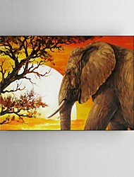 60x80CM Hand-Painted Southeast Asia Elephant Sunset African Landscape Oil Painting With Frame Ready to Hang