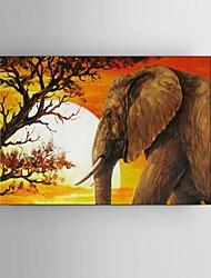 Ручная роспись Пейзаж / Животное / фантазия / Абстрактные пейзажи Картины маслом,Modern / Классика / Пастораль / Европейский стиль1