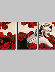 E-HOME® Stretched Canvas Art Red Rose And Monroe Decoration Painting  Set of 3