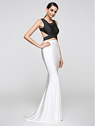 TS Couture®  Formal Evening Dress Trumpet / Mermaid Scoop Sweep / Brush Train Jersey with Side Draping