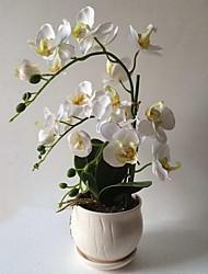 1 1 Ramo Outras Plantas Flor de Mesa Flores artificiais 14*14*42