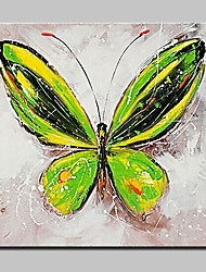 Hand Painted Butterfly Animal Oil Paintings On Canvas Modern Wall Art Picture With Stretched Frame Ready To Hang 80x80cm