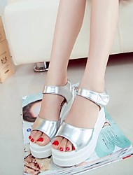 Women's Sandals Summer Wedges / Open Toe  Casual Wedge Heel Others Black / Silver Others