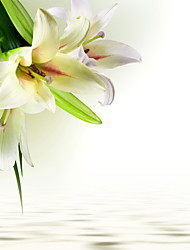 JAMMORY Mural Art Deco Wallpaper Contemporary Wall Covering,Canvas Yes Large Mural Fresh White Lilies