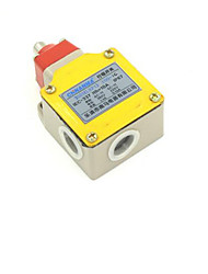 LXP1-100 / C Limit Switch(Rated Voltage 380V   Insulation Resistance 100 M)