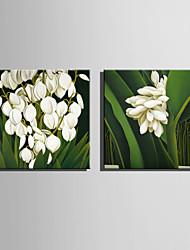 ботанический Холст для печати 2 шторы Готовы повесить , Квадратный