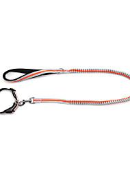 Dog Collar / Leash Reflective / Adjustable/Retractable / Safety / Soft / Fluorescent / Running Solid Green / Orange Nylon