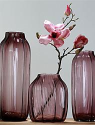 Color Stripe Transparent Glass Vase Decorative Flower Hydroponic Home Furnishing High-Grade Living Room Decoration