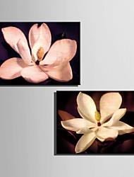 ботанический Холст для печати 2 шторы Готовы повесить , Вертикальная