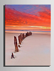 E-HOME® Stretched Canvas Art Array Of Wood On The Beach Decoration Painting  One Pcs