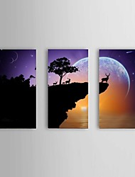 HD Print Canvas painting wall art 3 piece Elk Landscape Stretched Frame Ready to Hang