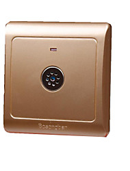 Champagne Gold Corridor Voice Induction Switch