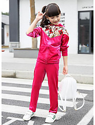 Girl's Casual/Daily Floral Clothing SetSilk Fall Blue / Pink