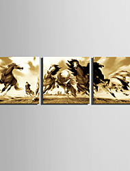 E-HOME® Stretched Canvas Art Galloping Horse Decorative Painting Set of 3
