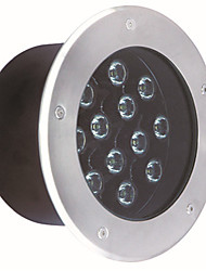 LED underground light outdoor lawn waterproof spotlights MM-13901