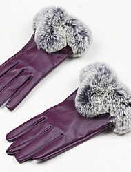 Touch Screen Women'S Leather Gloves (Touch-Screen Purple)