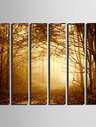 Холст Set Пейзаж Европейский стиль,более 5 панелей Холст Вертикальная Печать Искусство Декор стены For Украшение дома