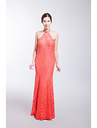 Formal Evening Dress Trumpet / Mermaid Halter Floor-length Lace with Crystal Detailing