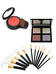 4 Blush+ShadowMakeup Brushes Wet Eyes / Face Uneven Skin Tone / Dark Circle Treatment China Others