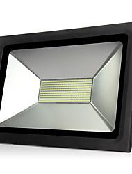lumière crue conduit étanche IP65 100w 110v conduit en forme de projecteur Projecteur pour l'éclairage extérieur des projecteurs lampe de