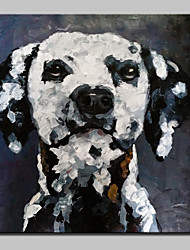100% Hand-Painted Dog Animal Oil Painting On Canvas Modern Abstract Wall Art Picture For Home Decoration Ready To Hang