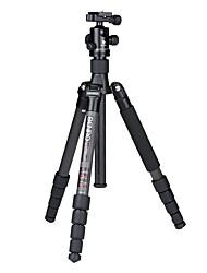 Benro c2690tb1 trépied avec fibre de carbone pour canon / nikon slr camera impreaaion nip slr trépied professionnel