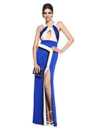 TS Couture® Prom  Formal Evening Dress - Celebrity Style / Ivanka Style A-line Halter Floor-length Georgette / Matte Satin with Side Draping