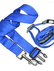 Cães Trelas Corrida Sólido Azul Náilon