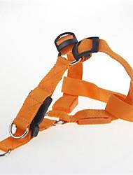 Chien Harnais Lampe LED Clignotant Solide Orange Nylon